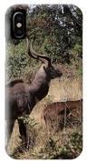 Male And Female Mountain Nyala IPhone Case