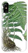 male fern, Dryopteris filix-mas IPhone Case