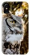 Male Great Horned Owl Portrait IPhone Case