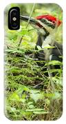 Male Pileated Woodpecker On The Ground No. 2 IPhone Case