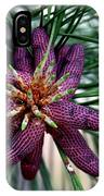 Male Ponderosa Pine Cones IPhone Case