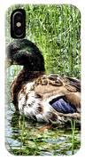 Mallard Duck 1 IPhone Case