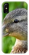 Mallard Duck Female IPhone Case