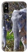 Mama And Baby Elephant IPhone Case
