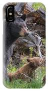 Mama Black Bear With Cinnamon Cubs IPhone Case