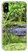 Mama Gator With Babies IPhone Case