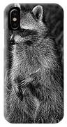 Mama Raccoon IPhone Case