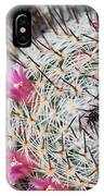 Mammillaria Cactus With Small Flowers IPhone Case