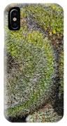 Mammillaria Red Cap Cristata IPhone Case
