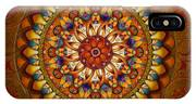 Mandala Ararat IPhone Case
