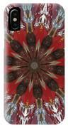 Mandala Of Glass IPhone Case
