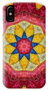 Mandala - Talisman 1404 IPhone Case