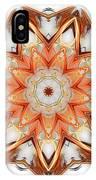 Mandala - Talisman 1620 IPhone Case