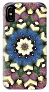 Mandala - Talisman 1684 IPhone Case