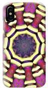 Mandala - Talisman 1687 IPhone Case