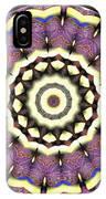 Mandala - Talisman 1690 IPhone Case