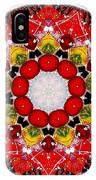 Mandala - Talisman 4010 IPhone Case