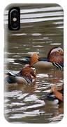 Mandarin Duck 20130507_93 IPhone Case
