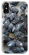 Many Doves At Piazza San Marco Venice IPhone Case