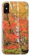 Maple Birch Forest In Autumn IPhone Case