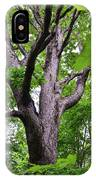 Maple Branches IPhone Case