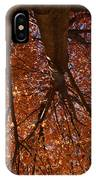 Maple Dreaming IPhone Case