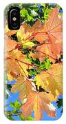 Maple Mania 1 IPhone Case