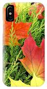 Maple Mania 5 IPhone Case