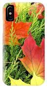 Maple Mania 5 IPhone Case