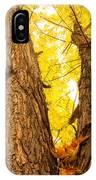 Maple Tree 3 IPhone Case