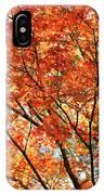 Maple Tree Foliage IPhone Case