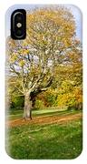 Maple Tree On The Slope. IPhone Case