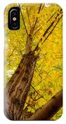 Maple Tree Poster IPhone Case