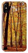 Maple Woods Trail 3 IPhone Case