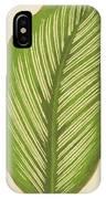 Maranta Alba Lineata IPhone Case