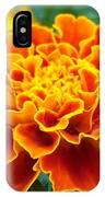 Marigold Photograph IPhone Case