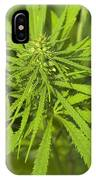 Marihuana IPhone Case