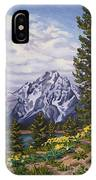 Marina's Edge, Jenny Lake, Grand Tetons IPhone X Case