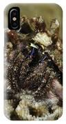 Marine Hermit Crab IPhone Case