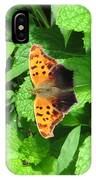 Maryland Eastern Comma IPhone Case