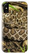 Massasauga Rattlesnake IPhone Case