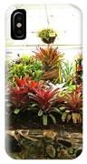 Massed Bromeliad In Hothouse IPhone Case