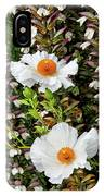 Matilija Poppies IPhone Case