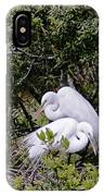 Mating Season IPhone Case