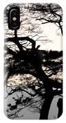 Maui Windy Tree IPhone Case