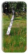 Meadow With Birch Trees IPhone Case