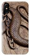 Medieval Demon - 11th Century, Turin, Italy IPhone Case