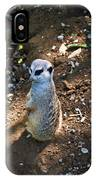 Meerkat Responding IPhone Case