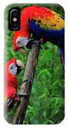 Meeting Of The Macaws  IPhone Case