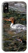 Merganser And Spawning Salmon - Odell Lake Oregon IPhone Case